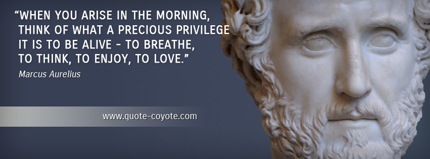 Marcus Aurelius - When you arise in the morning, think of what a precious privilege it is to be alive - to breathe, to think, to enjoy, to love.
