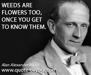 Know quotes - Weeds are flowers too, once you get to know them.