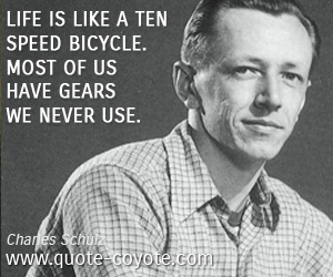 Use quotes - Life is like a ten speed bicycle. Most of us have gears we never use.