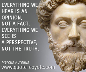 quotes - Everything we hear is an opinion, not a fact. Everything we see is a perspective, not the truth.