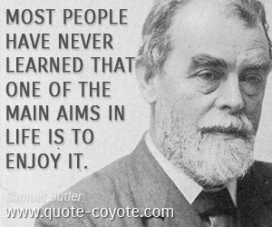 quotes - Most people have never learned that one of the main aims in life is to enjoy it.