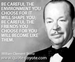 Life quotes - Be careful the environment you choose for it will shape you; be careful the friends you choose for you will become like them.