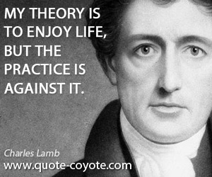 Against quotes - My theory is to enjoy life, but the practice is against it.