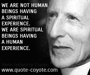 quotes - We are not human beings having a spiritual experience. We are spiritual beings having a human experience.