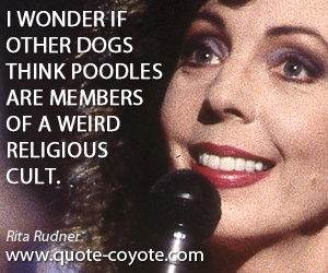 Weird quotes - I wonder if other dogs think poodles are members of a weird religious cult.