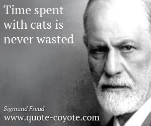 quotes - Time spent with cats is never wasted.